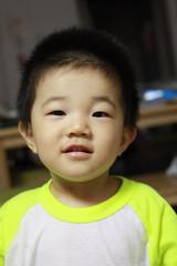 寝そうで寝ないとらちゃん (2012/7/22)