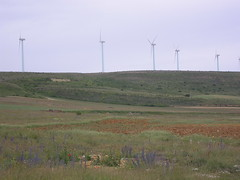 prairie, steppe, machine, windmill, field, plain, wind, wind farm, natural environment, electricity, wind turbine, grassland,