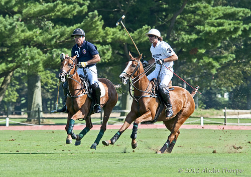 double 3 polo by Alida's Photos