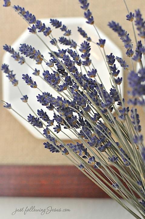 lavender 5.jpg