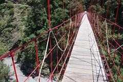 truss bridge(0.0), amusement ride(0.0), adventure(1.0), suspension bridge(1.0), canopy walkway(1.0), rope bridge(1.0), bridge(1.0),