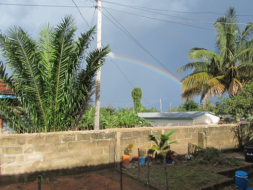 View over our backyard, Nov 2012