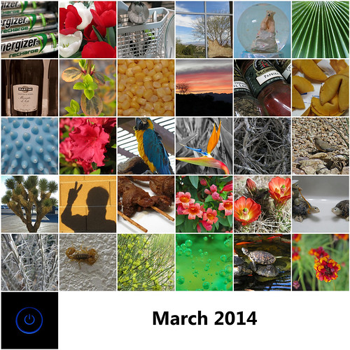 2014:365 March Mosaic