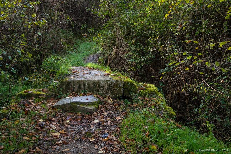 El pequeño puente de piedra