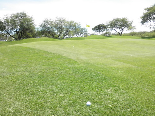 ewa beach Golf Club 262