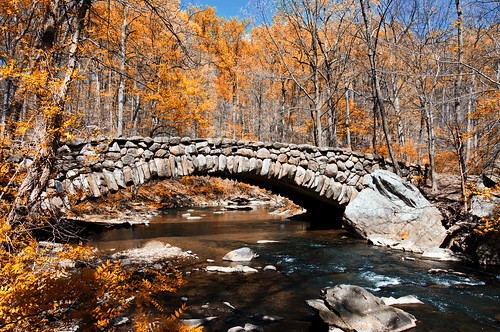 Rock Creek Park Bridge