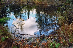 Baxter State Park (Millinocket, Maine, shot with Nikon D7000)