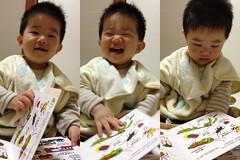 今夜の読書とらちゃん(2012/4/16)