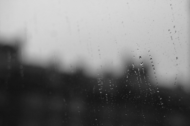 118/366: Lluvia gris