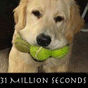 31 Million Seconds