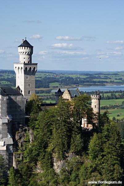 Blick vorbei am Schloss Neuschwanstein ins Alpenvorland