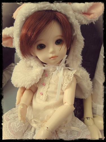 Dollmeet @ Bfree Studio 7560602086_6342f85702