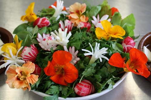 Sabzi Khordan – Herb platter