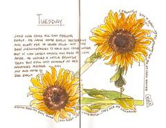 10-07-12b by Anita Davies