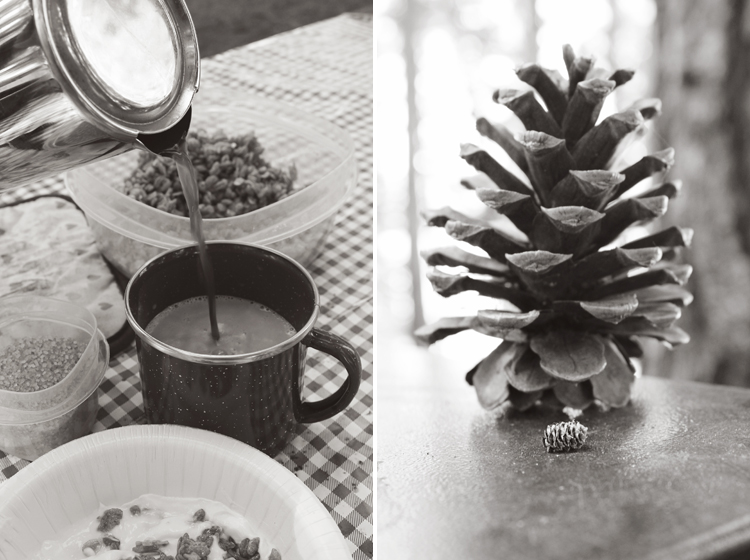 Coffee-Pinecone-Collage