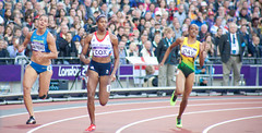 sprint, athletics, track and field athletics, 110 metres hurdles, 100 metres hurdles, sports, running, 800 metres, heptathlon, person, athlete,