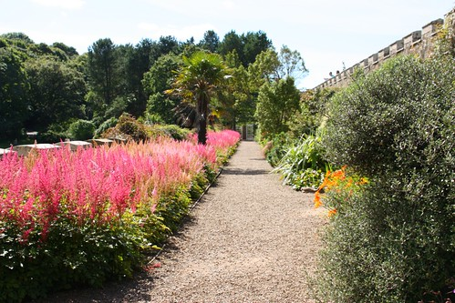 Flower border at Culzean Castle
