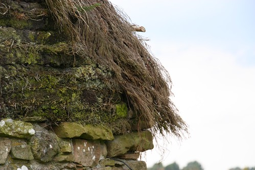 Stone, turf and thatch