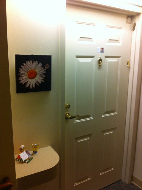 Birthday Daisy Photo On Canvas