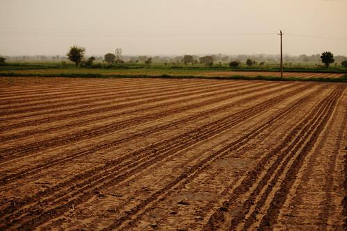 landscape dry rainfall gujarat