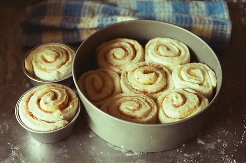 sakura sticky rolls.