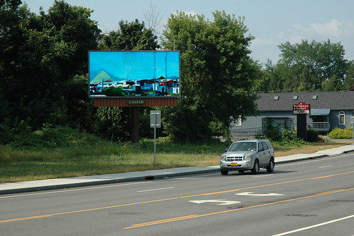 Albany Billboard Art Project 2012 - Julia Cocuzza (16)