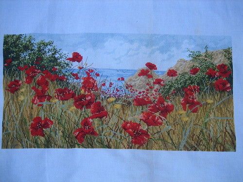 Clifftop Poppies complete