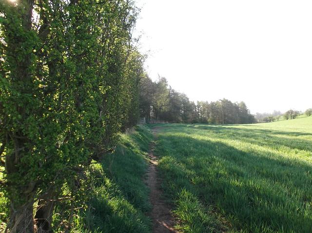 Appleby - Langwathby Trek 19.4.14 023