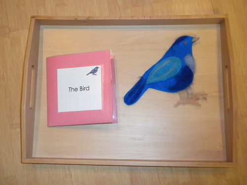 Parts of a Bird Cards with Felt Bird (Photo from Discovery Days and Montessori Moments)