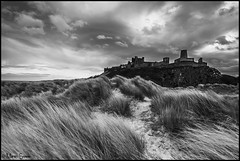 Bamburgh from the dunes