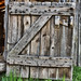 Dutch crib door on old barn