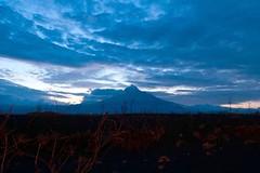 Goma landscape