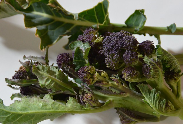how to cook purple sprouting broccoli seasonal tasty