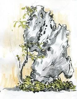 Lan Su Chinese Garden - Stone