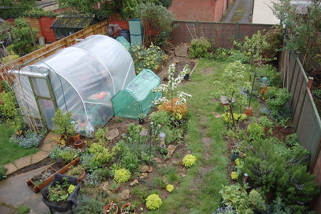 A view of the back garden in early May 2012