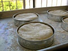gluten-free brioche buns: ready to rise