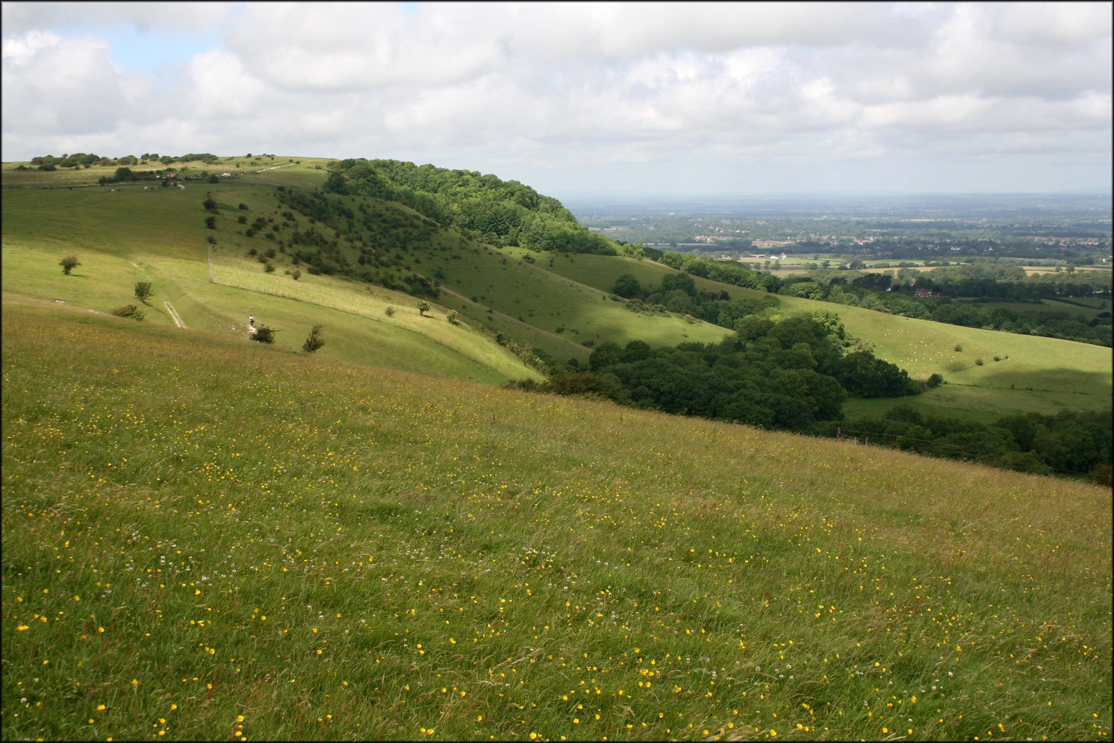 The South Downs near Plumpton