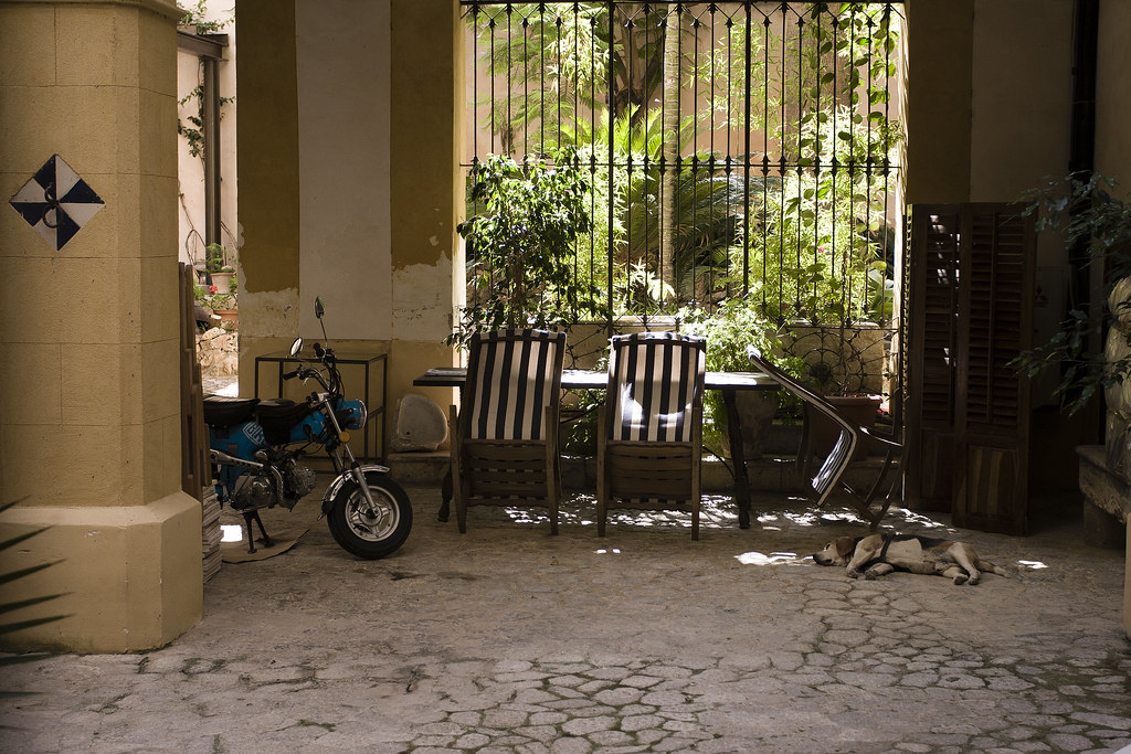 Gate - Palma de Mallorca