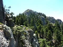 Trace Samulaghja-Quercitella au retour : depuis la plate-forme du contournement, le sommet de Punta di Quercitella