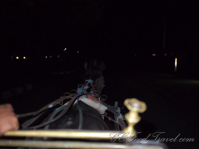 Horse Cart Transfer