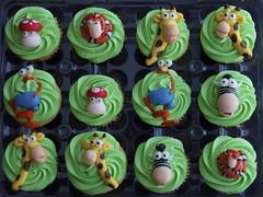 Gazoon Cupcakes!