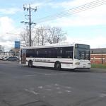 Melbourne Bus Link