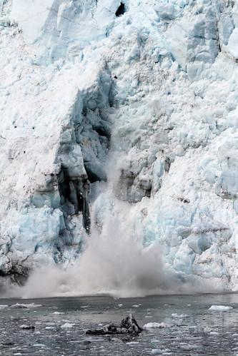 Glacier Bay - Calving Splash