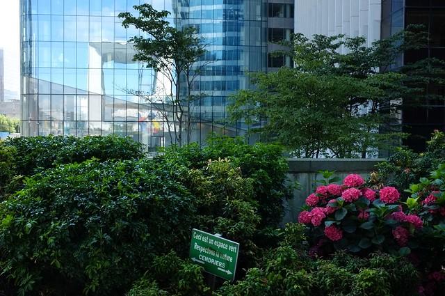 La nature au coeur de la ville flickr photo sharing for La ville nature