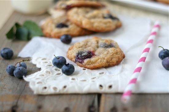Blueberry White Chocolate Chunk Oatmeal Cookies 1