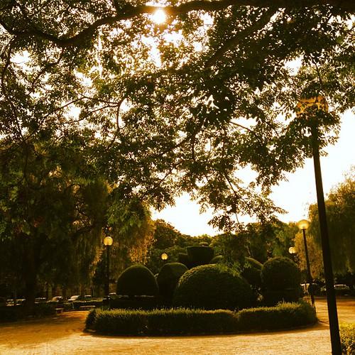 Me encanta pasear por Blasco Ibañez... by rutroncal