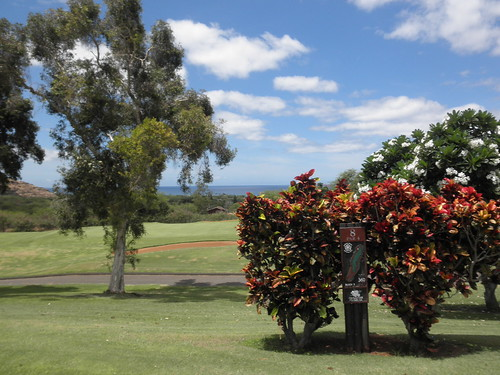 Makaha Valley Country Club 141