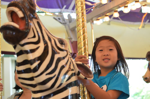 Riding the zebra on the carousel
