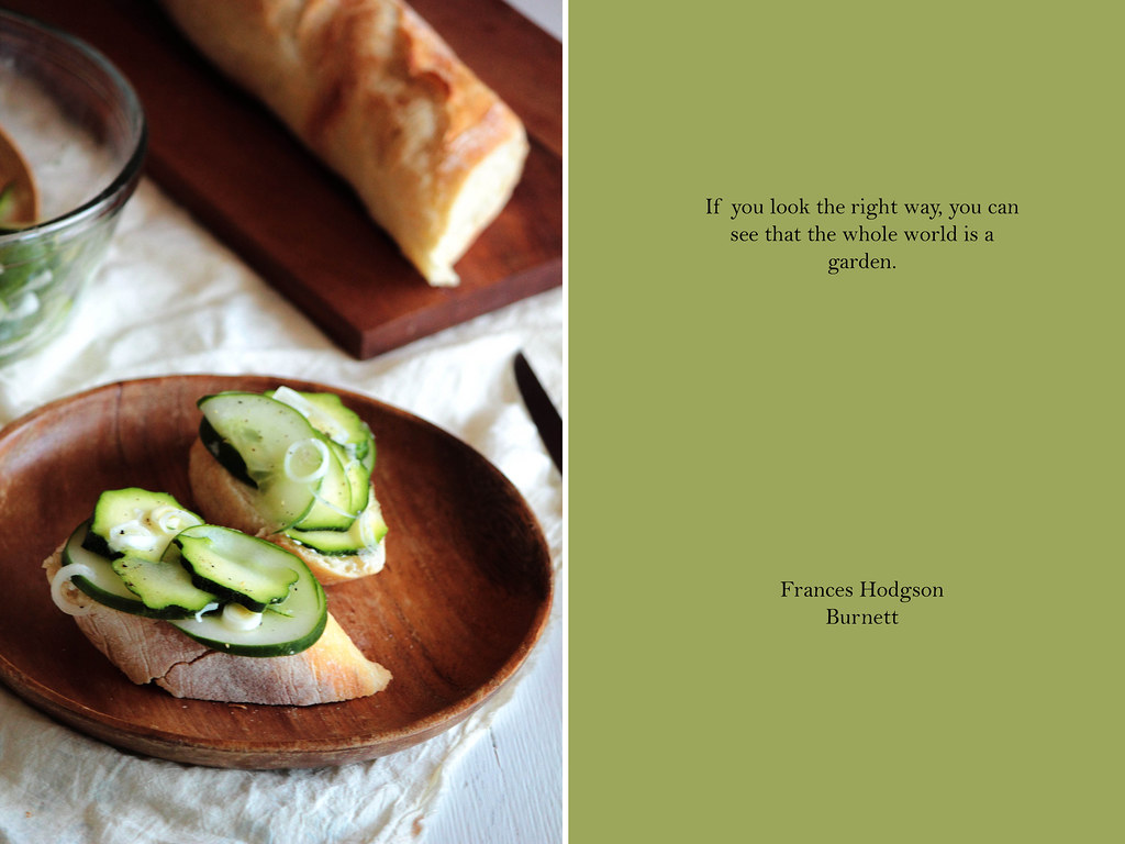 Cucumber & Zucchini Cream Cheese Slices