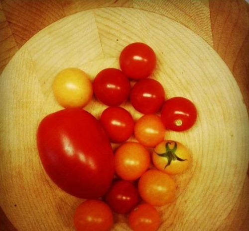 tomatobowl CreateGirl